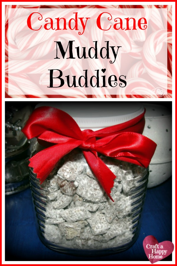 Looking for a quick recipe to make to take to holiday parties this year? This Peppermint Muddy Buddies recipe only takes 15 minutes to make and is so yummy!