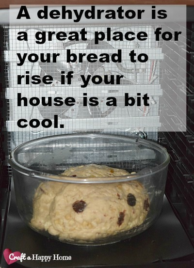 Use a dehydrator on the lowest temp to rise your bread if your house is cool.